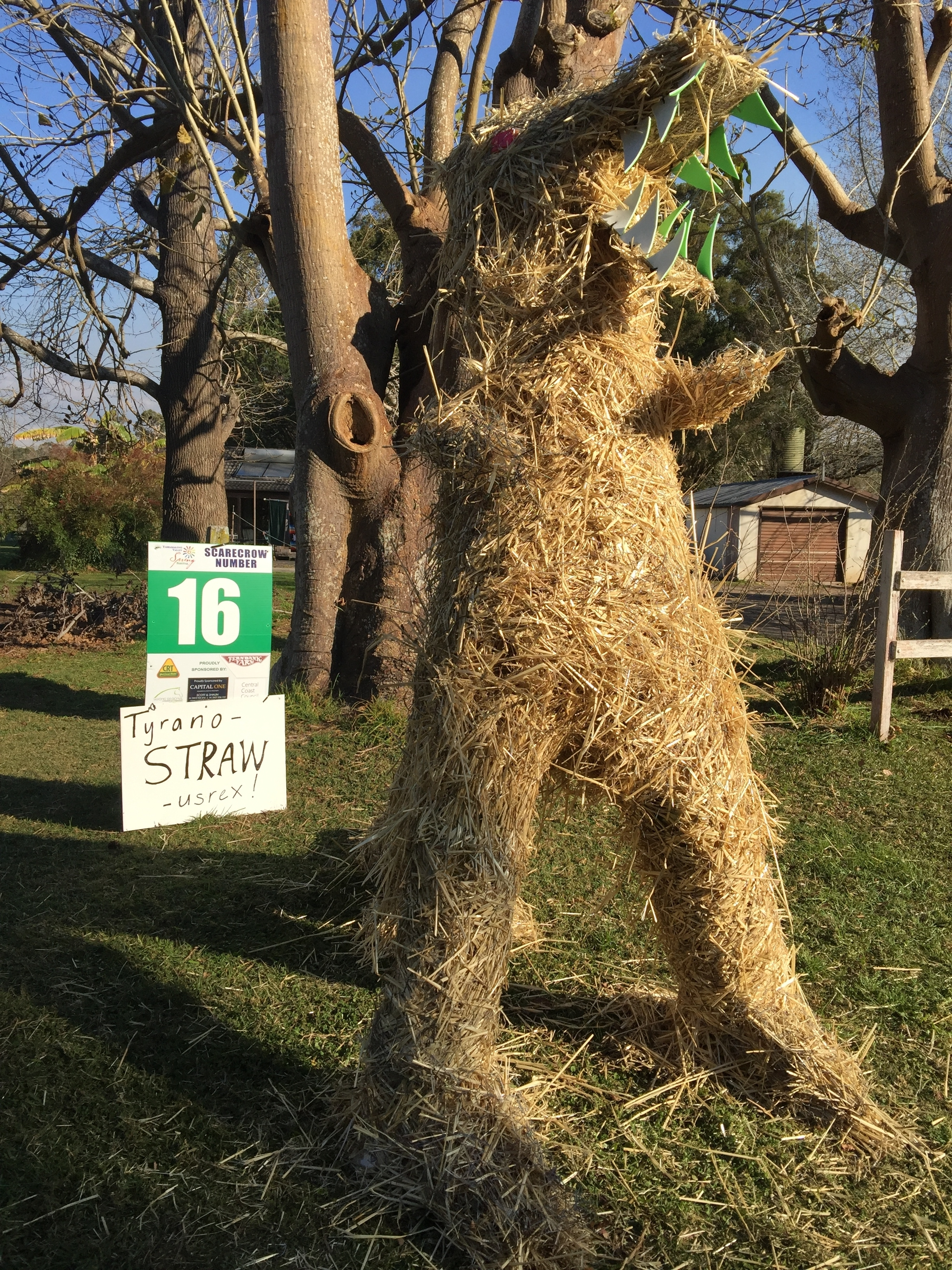 2017 Scarecrow Competition 171 Yarramalong Valley Spring
