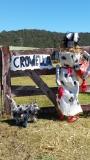 56: Crowella
