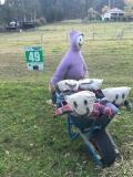 49: Wheelbarrow Rides