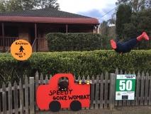 50: Speedy Gonz Wombat