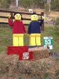 53 - Lego Crow