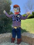 07 - Woody